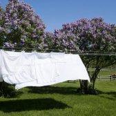 ¿Necesita a las particiones de lavado Noticias?