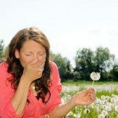 Achoos a través de América: cómo prevenir las alergias en su área