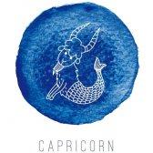 vida del amor de Capricornio 2015: lo que hace su signo del zodiaco decir acerca de su vida amorosa próximo año?