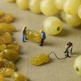 serie imaginativa de dioramas capturar pequeños pueblos entre la gran comida