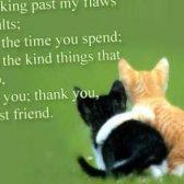 Carta a su mejor amigo