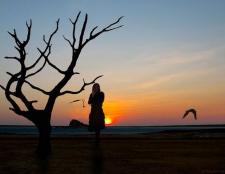 Sentimientos: La soledad contra las emociones